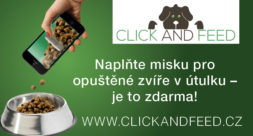 CNF_-_Banner_velký