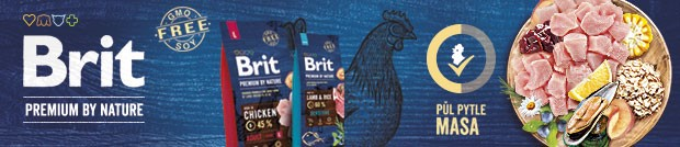 Brit-banner-3